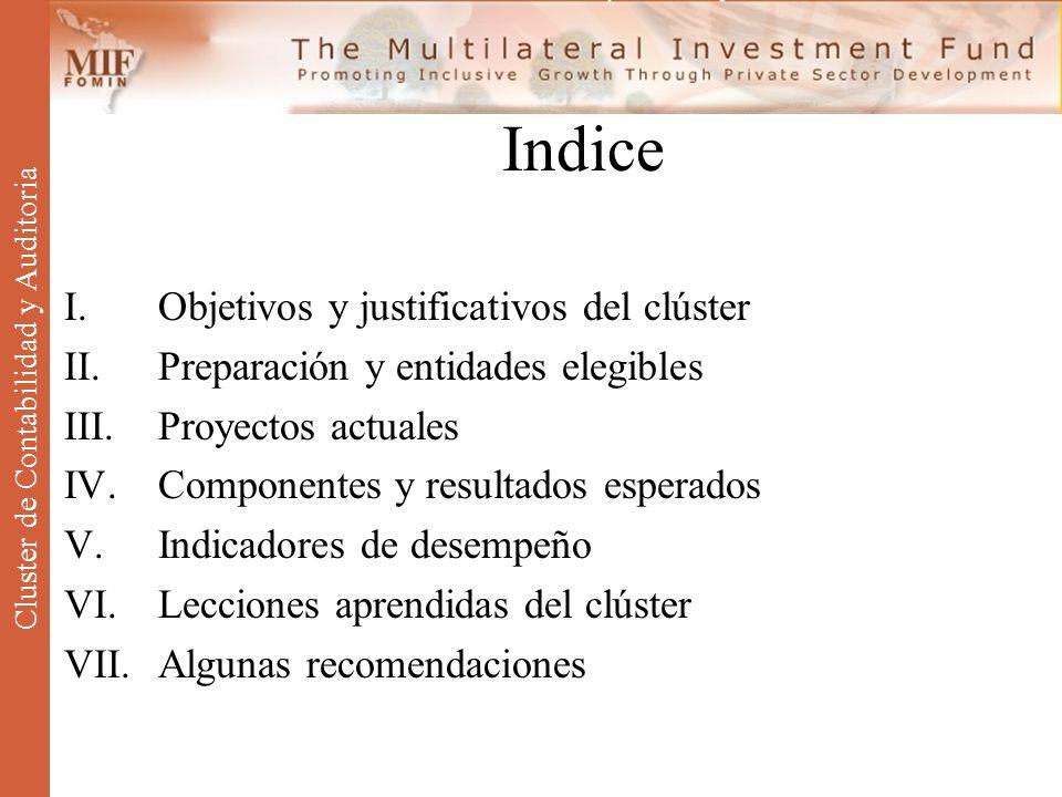Indice I.Objetivos y justificativos del clúster II.Preparación y entidades elegibles III.Proyectos actuales IV.Componentes y resultados esperados V.In