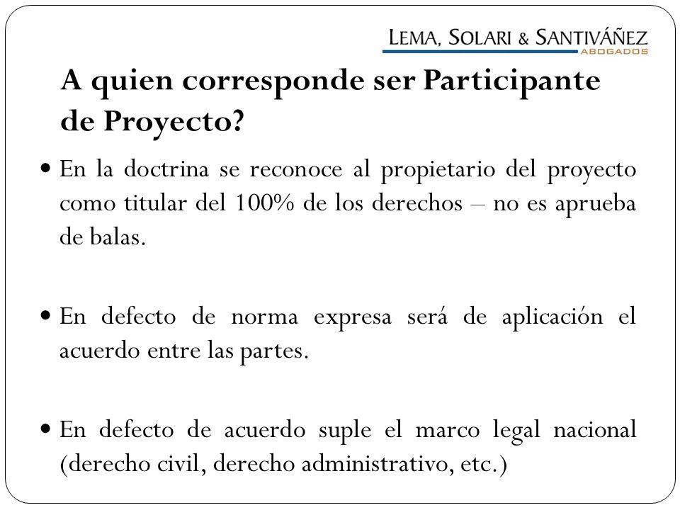 A quien corresponde ser Participante de Proyecto? En la doctrina se reconoce al propietario del proyecto como titular del 100% de los derechos – no es