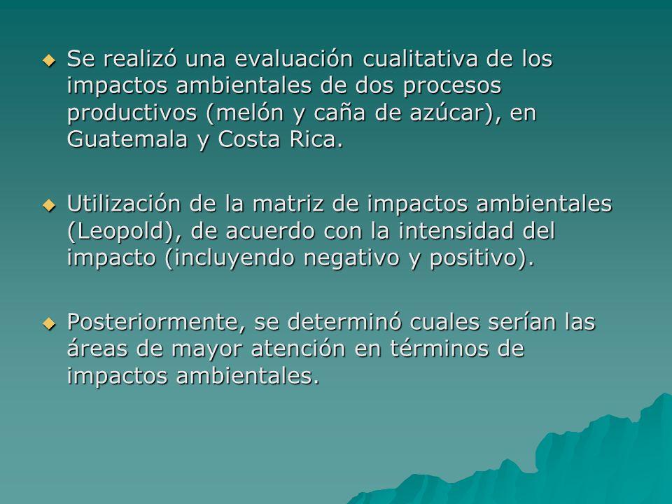 Se realizó una evaluación cualitativa de los impactos ambientales de dos procesos productivos (melón y caña de azúcar), en Guatemala y Costa Rica. Se