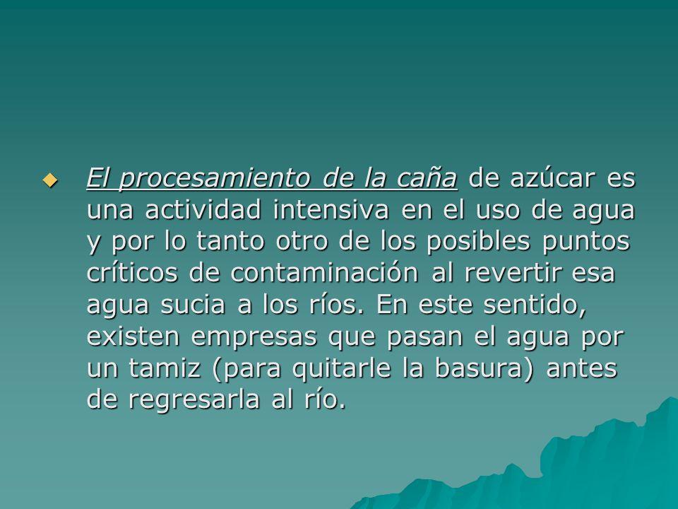 El procesamiento de la caña de azúcar es una actividad intensiva en el uso de agua y por lo tanto otro de los posibles puntos críticos de contaminació