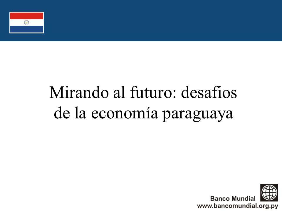 Mirando al futuro: desafios de la economía paraguaya