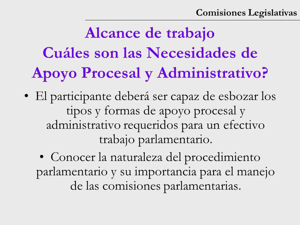 Comisiones Legislativas El participante deberá ser capaz de esbozar los tipos y formas de apoyo procesal y administrativo requeridos para un efectivo