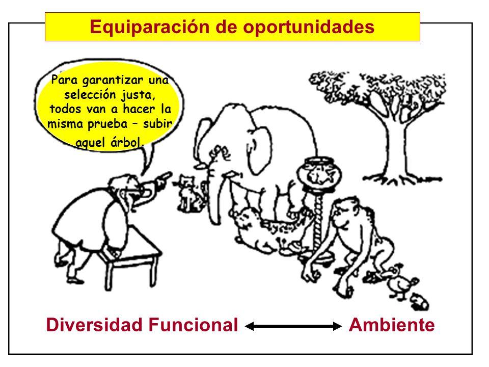 Diversidad Funcional Ambiente Para garantizar una selección justa, todos van a hacer la misma prueba – subir aquel árbol. Equiparación de oportunidade