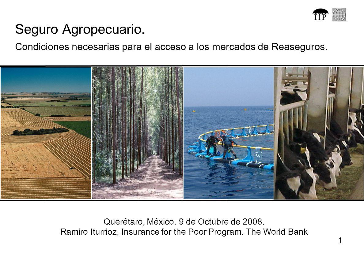 1 Seguro Agropecuario. Condiciones necesarias para el acceso a los mercados de Reaseguros. Querétaro, México. 9 de Octubre de 2008. Ramiro Iturrioz, I