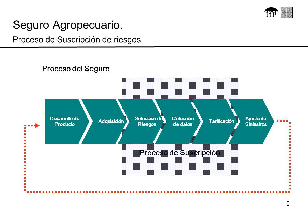 5 Seguro Agropecuario. Proceso de Suscripción de riesgos. Desarrollo de Producto Colección de datos Tarificación Ajuste de Siniestros Adquisición Sele