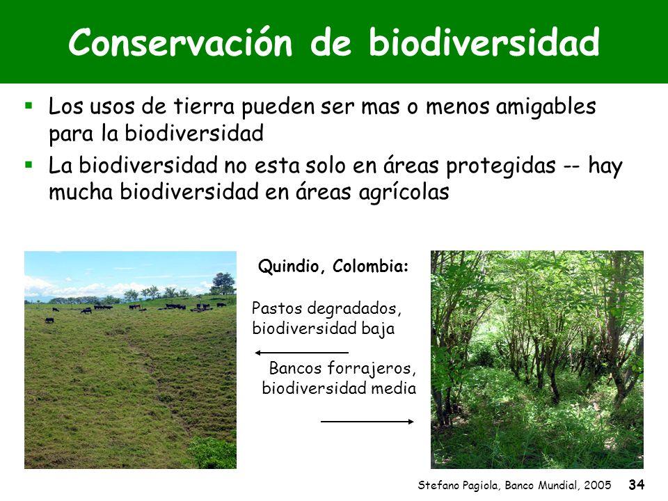 Stefano Pagiola, Banco Mundial, 2005 34 Conservación de biodiversidad Los usos de tierra pueden ser mas o menos amigables para la biodiversidad La bio