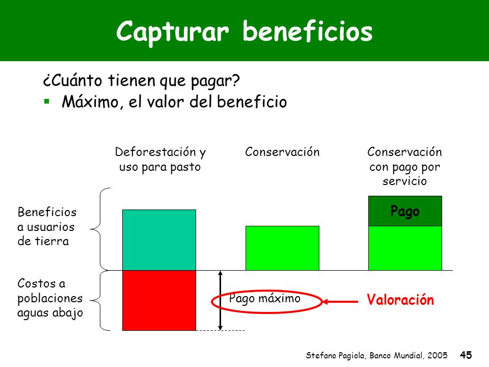Stefano Pagiola, Banco Mundial, 2005 45 Capturar beneficios ¿Cuánto tienen que pagar? Máximo, el valor del beneficio Beneficios a usuarios de tierra C
