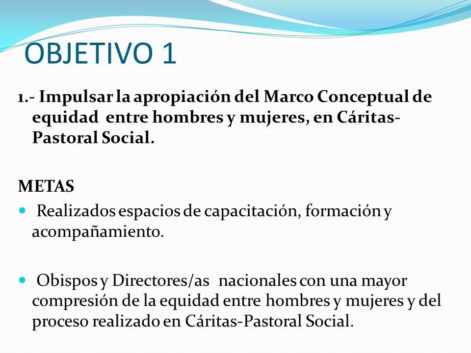 OBJETIVO 1 1.- Impulsar la apropiación del Marco Conceptual de equidad entre hombres y mujeres, en Cáritas- Pastoral Social. METAS Realizados espacios