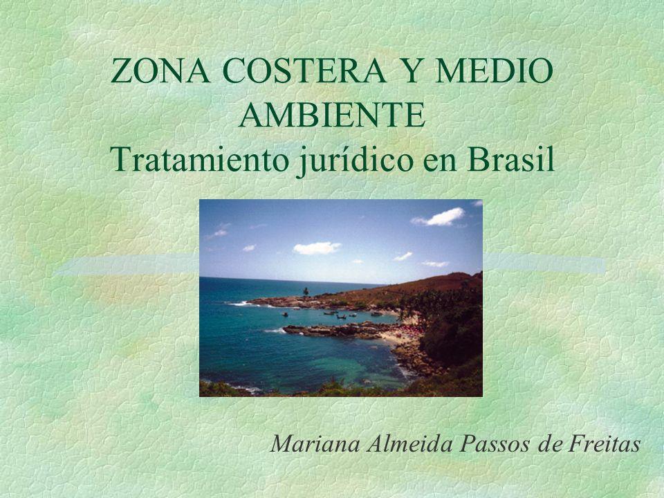 ZONA COSTERA Y MEDIO AMBIENTE Tratamiento jurídico en Brasil Mariana Almeida Passos de Freitas