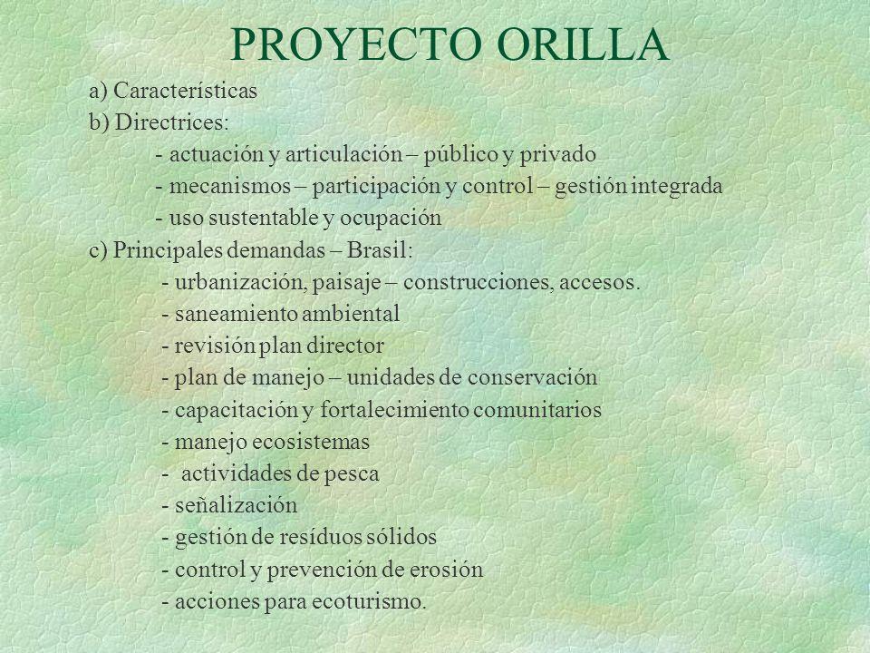 PROYECTO ORILLA a) Características b) Directrices: - actuación y articulación – público y privado - mecanismos – participación y control – gestión int