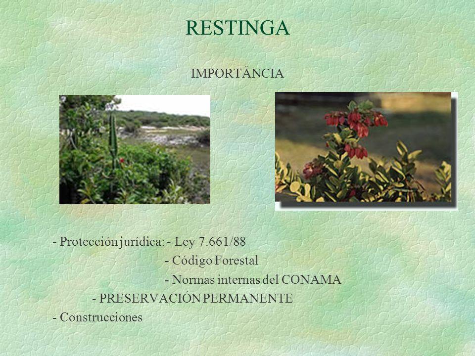 RESTINGA IMPORTÂNCIA - Protección jurídica: - Ley 7.661/88 - Código Forestal - Normas internas del CONAMA - PRESERVACIÓN PERMANENTE - Construcciones