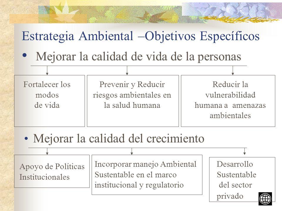 Iniciativa de Aire Limpio (AL) Objetivo: revertir el deterioro de la calidad de aire urbano de AL (resultado de la urbanización, transporte vehicular, y producción industrial) Ciudades Participantes: Bogota, Buenos Aires, Cd.