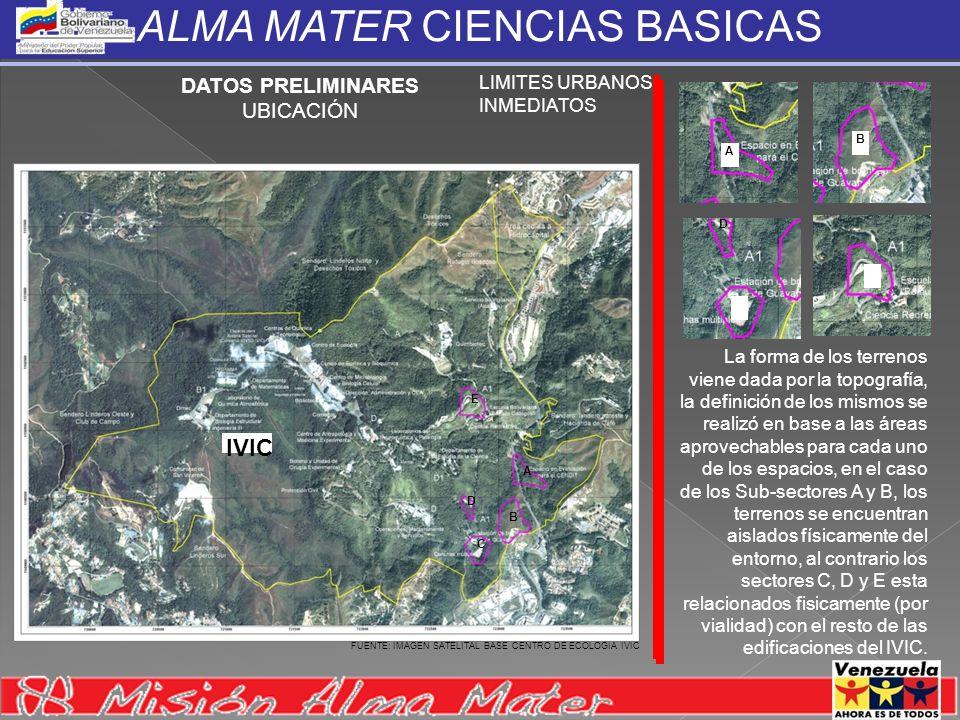 ALMA MATER CIENCIAS BASICAS DATOS PRELIMINARES UBICACIÓN LIMITES URBANOS INMEDIATOS La forma de los terrenos viene dada por la topografía, la definici