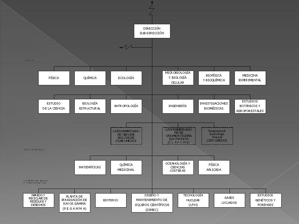 ALMA MATER CIENCIAS BASICAS CARACTERÍSTICAS DEL PROYECTO CONCEPTO DEL PROYECTO INTENCIONES DEL PROYECTO EL CONJUNTO SE APROPIARA DEL ESPACIO POR MEDIO DE UNA IMPLANTACIÓN EN CRUZ QUE PERMITIRÁ GENERAR EN EL SUB-SECTOR ACADEMICO LA APROPIACION DEL TERRITORIO.