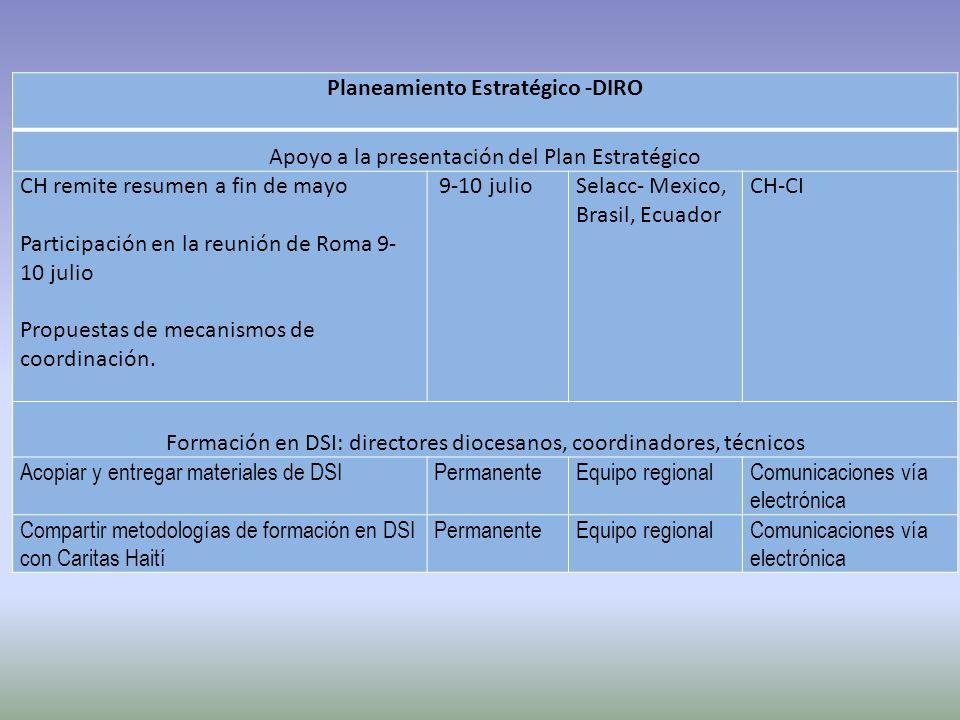 Planeamiento Estratégico -DIRO Apoyo a la presentación del Plan Estratégico CH remite resumen a fin de mayo Participación en la reunión de Roma 9- 10 julio Propuestas de mecanismos de coordinación.