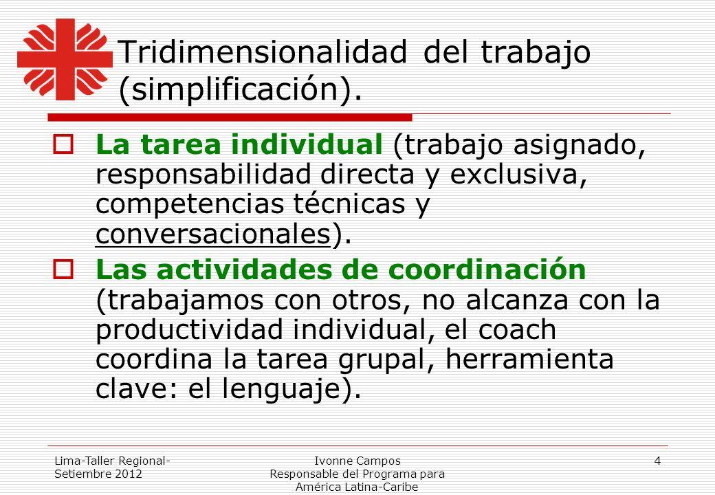 Lima-Taller Regional- Setiembre 2012 Ivonne Campos Responsable del Programa para América Latina-Caribe 4 Tridimensionalidad del trabajo (simplificació