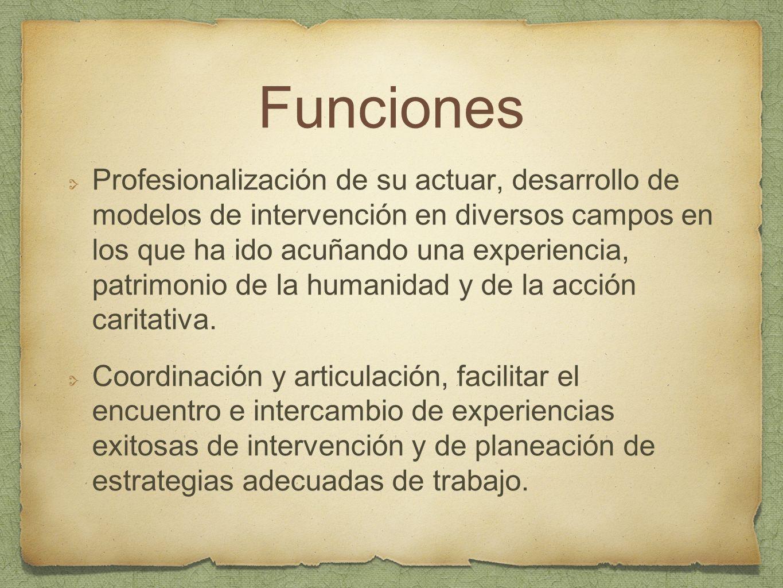 Funciones Profesionalización de su actuar, desarrollo de modelos de intervención en diversos campos en los que ha ido acuñando una experiencia, patrim