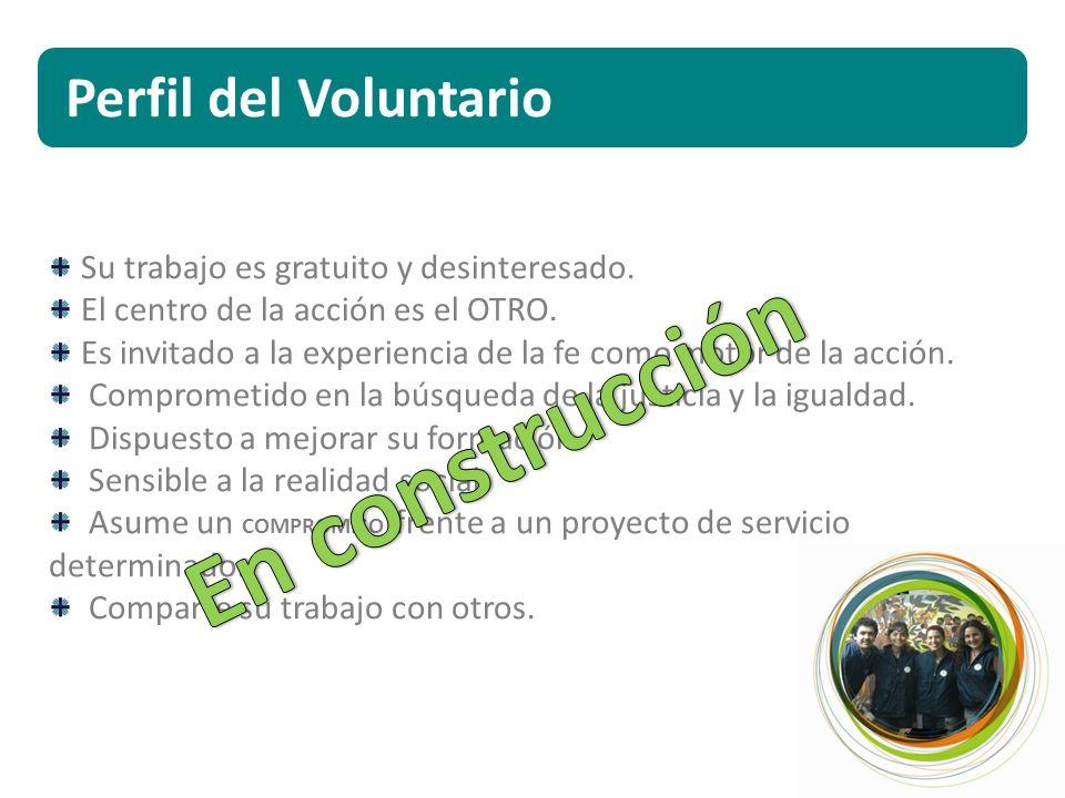 Perfil del Voluntario Su trabajo es gratuito y desinteresado.