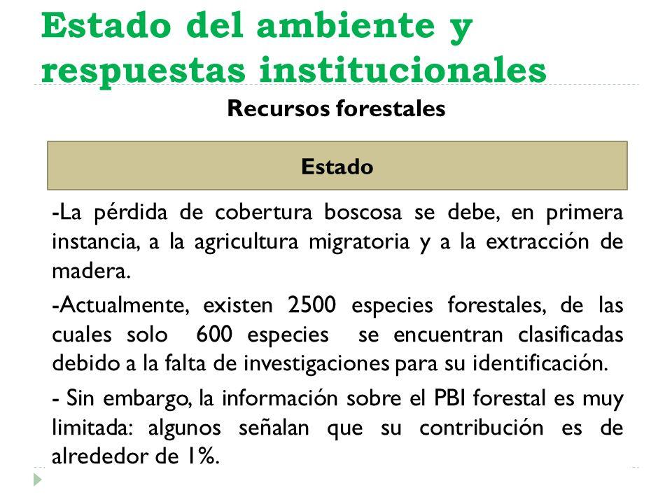 Recursos forestales Estado del ambiente y respuestas institucionales Estado -La pérdida de cobertura boscosa se debe, en primera instancia, a la agric