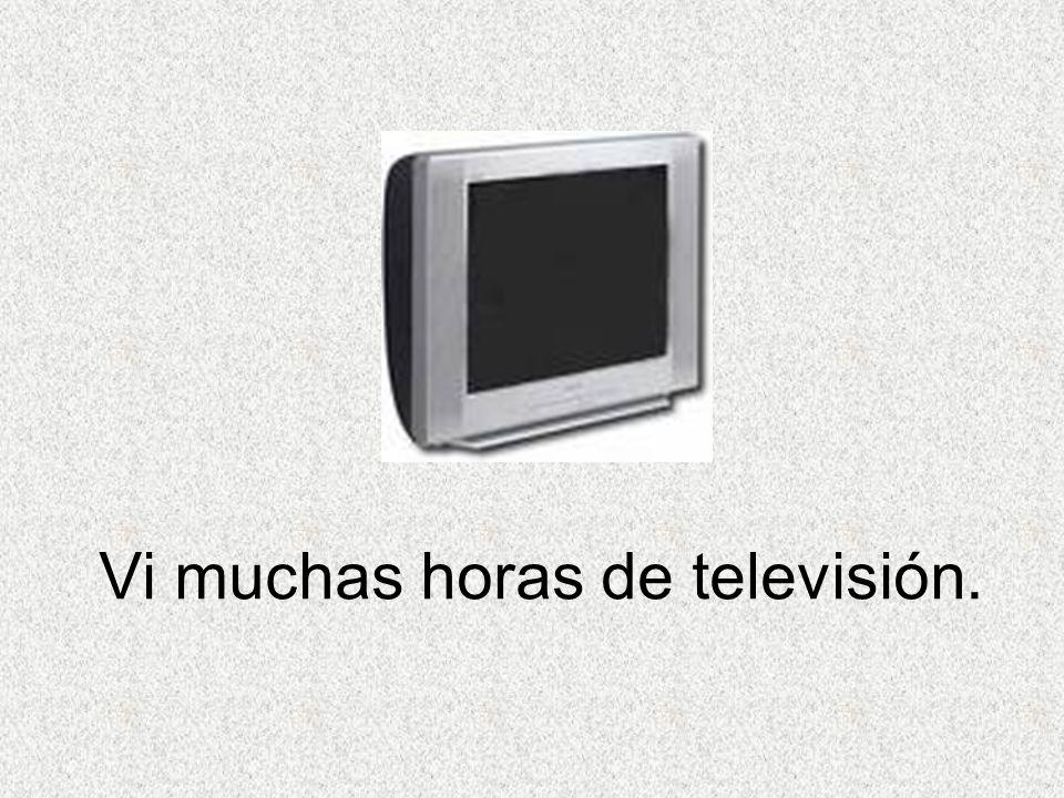 Vi muchas horas de televisión.