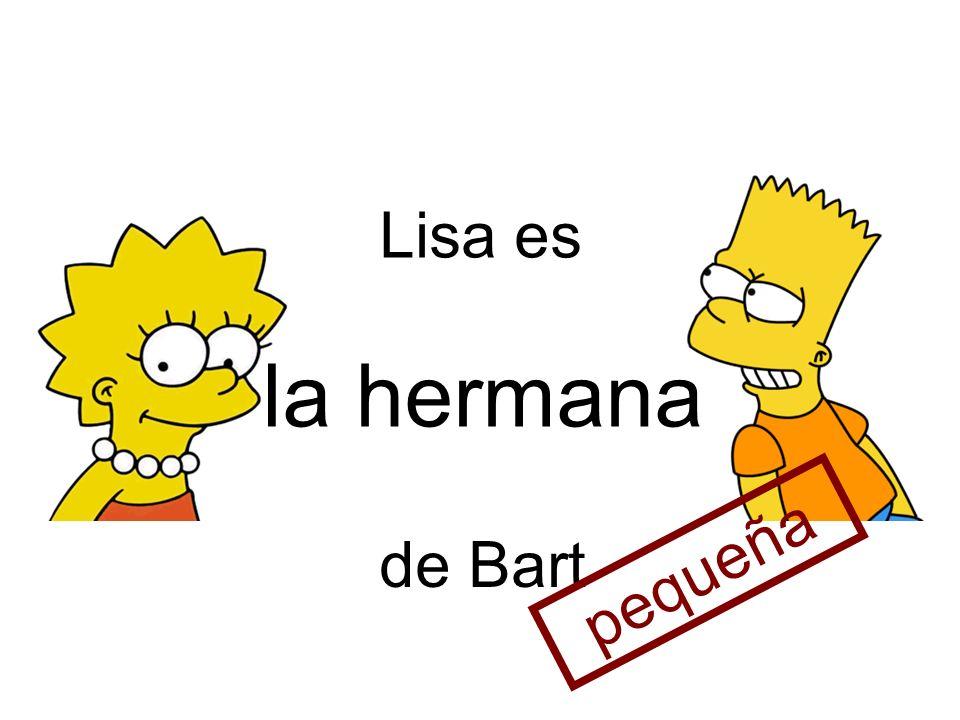la hermana Lisa es de Bart pequeña