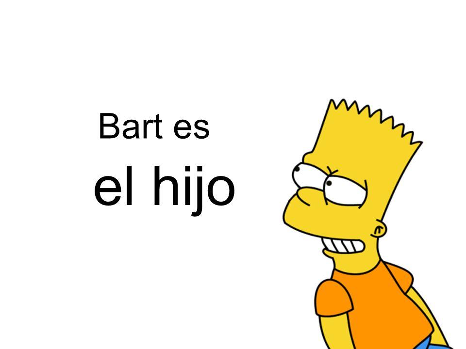 el hermano Bart es de Lisa mayor