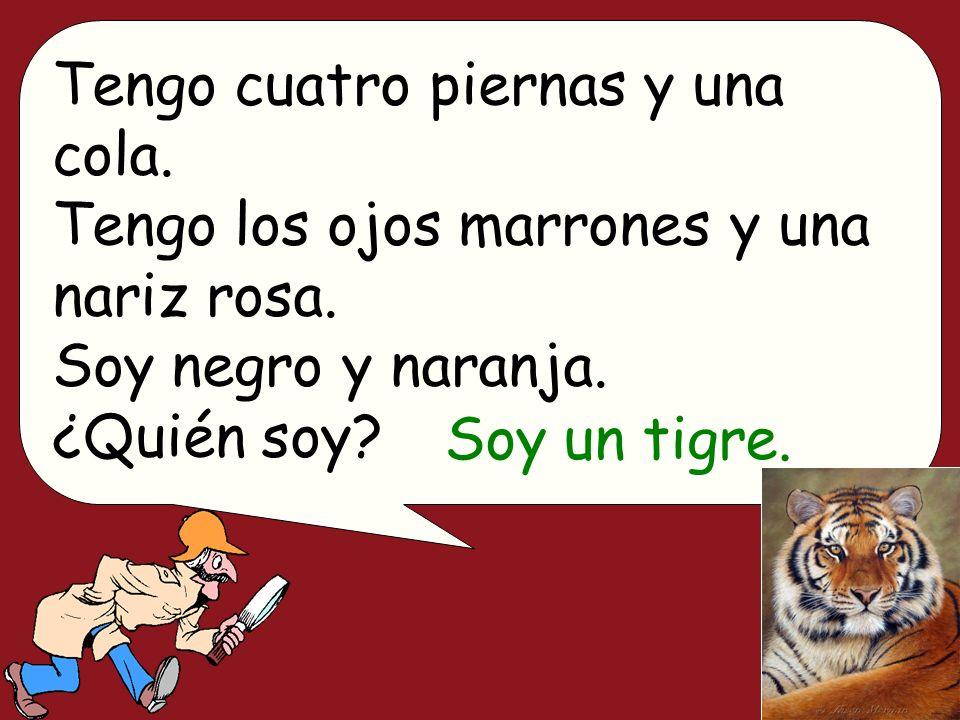 Tengo cuatro piernas y una cola. Tengo los ojos marrones y una nariz rosa. Soy negro y naranja. ¿Quién soy? Soy un tigre.