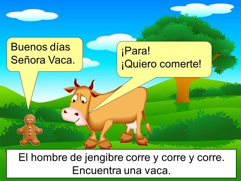 Buenos días Señora Vaca. ¡Para! ¡Quiero comerte! El hombre de jengibre corre y corre y corre. Encuentra una vaca.