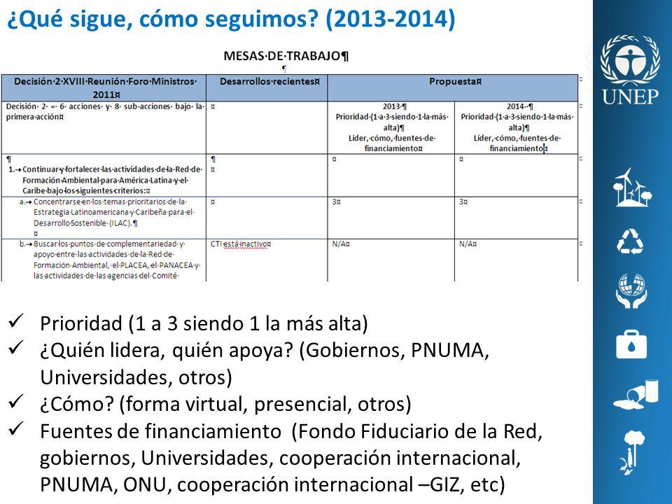 ¿Qué sigue, cómo seguimos? (2013-2014) Prioridad (1 a 3 siendo 1 la más alta) ¿Quién lidera, quién apoya? (Gobiernos, PNUMA, Universidades, otros) ¿Có