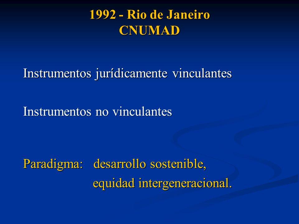 1992 - Rio de Janeiro CNUMAD Instrumentos jurídicamente vinculantes Instrumentos no vinculantes Paradigma: desarrollo sostenible, equidad intergenerac