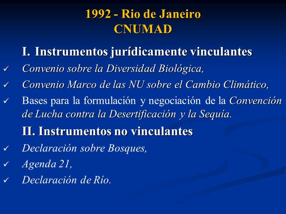 1992 - Rio de Janeiro CNUMAD Declaración de Río (27 principios) : establecer una alianza mundial nueva y equitativa mediante la creación de nuevos niveles de cooperación entre los Estados, los sectores clave de las sociedades y las personas, y alcanzar acuerdos internacionales en los que se respeten los intereses de todos y se proteja la integridad del sistema ambiental y de desarrollo mundial.