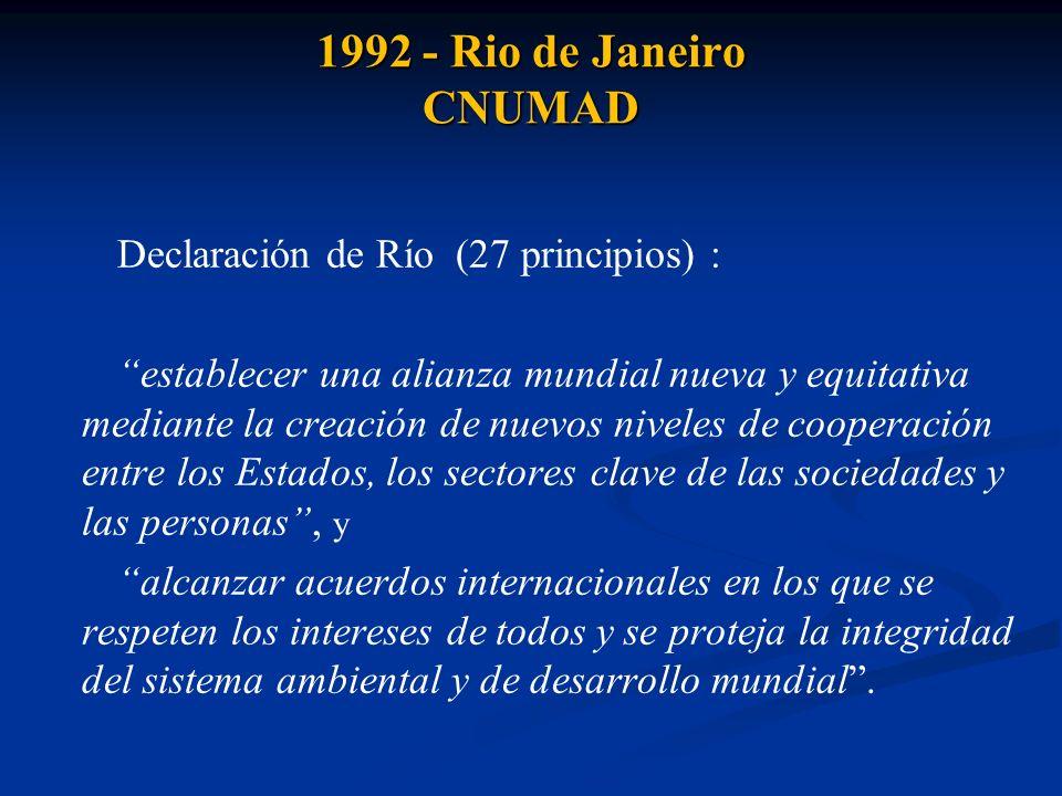 1992 - Rio de Janeiro CNUMAD - Derecho a un medio ambiente adecuado (1) - Derechos de Acceso: información - participación - justicia (10) - Implementación nacional del desarrollo sostenible (3, 4, 8, 20, 21) - Deber de cooperar (5, 6, 7, 9, 12, 18, 19) - Deber de evitar el daño ambiental (2, 14, 17, 24) - Deber de reparar el daño ambiental (10, 13) - Deber de adoptar legislaciones ambientales (11) - Principio contaminador - pagador (16) - Reconocimiento del derecho de las minorías (22, 23) - Principio (enfoque) de precaución (15) - Indisolubilidad de la paz, el desarrollo y la protección ambiental (25, 26)