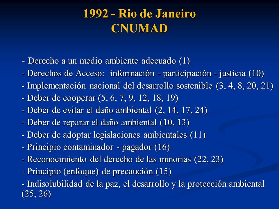 1992 - Rio de Janeiro CNUMAD - Derecho a un medio ambiente adecuado (1) - Derechos de Acceso: información - participación - justicia (10) - Implementa