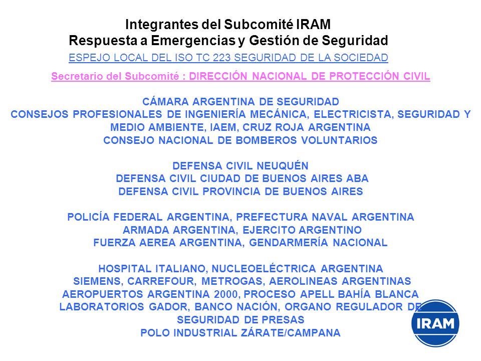Secretario del Subcomité : DIRECCIÓN NACIONAL DE PROTECCIÓN CIVIL CÁMARA ARGENTINA DE SEGURIDAD CONSEJOS PROFESIONALES DE INGENIERÍA MECÁNICA, ELECTRI