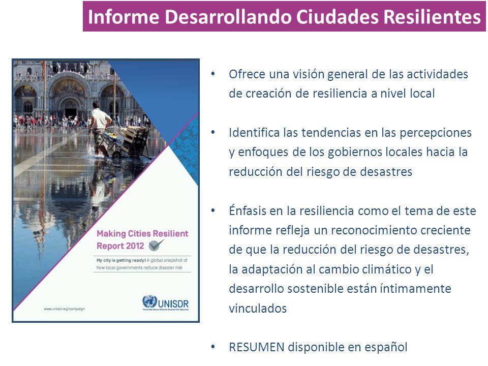 Ofrece una visión general de las actividades de creación de resiliencia a nivel local Identifica las tendencias en las percepciones y enfoques de los