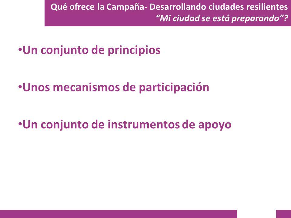 Un conjunto de principios Unos mecanismos de participación Un conjunto de instrumentos de apoyo Qué ofrece la Campaña- Desarrollando ciudades resilien