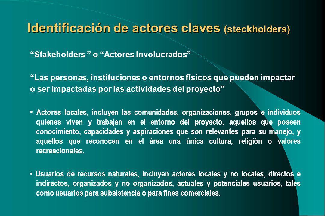 Identificación de actores claves (steckholders) Stakeholders o Actores Involucrados Las personas, instituciones o entornos físicos que pueden impactar