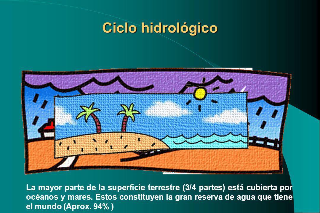 Ciclo hidrológico La mayor parte de la superficie terrestre (3/4 partes) está cubierta por océanos y mares. Estos constituyen la gran reserva de agua