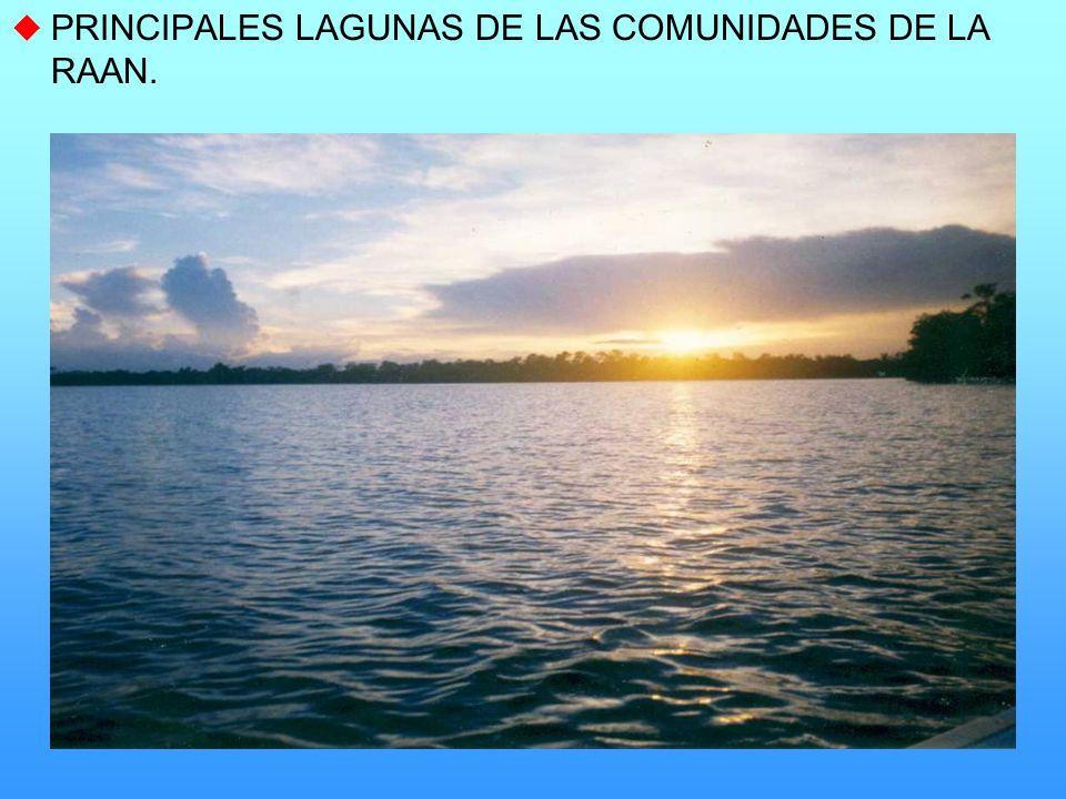 PRINCIPALES LAGUNAS DE LAS COMUNIDADES DE LA RAAN.