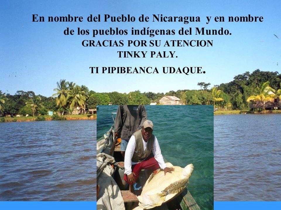 En nombre del Pueblo de Nicaragua y en nombre de los pueblos indígenas del Mundo. GRACIAS POR SU ATENCION TINKY PALY. TI PIPIBEANCA UDAQUE.