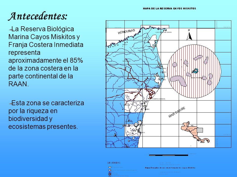 Antecedentes: La Reserva Biológica Marina Cayos Miskitos y Franja Costera Inmediata representa aproximadamente el 85% de la zona costera en la parte c