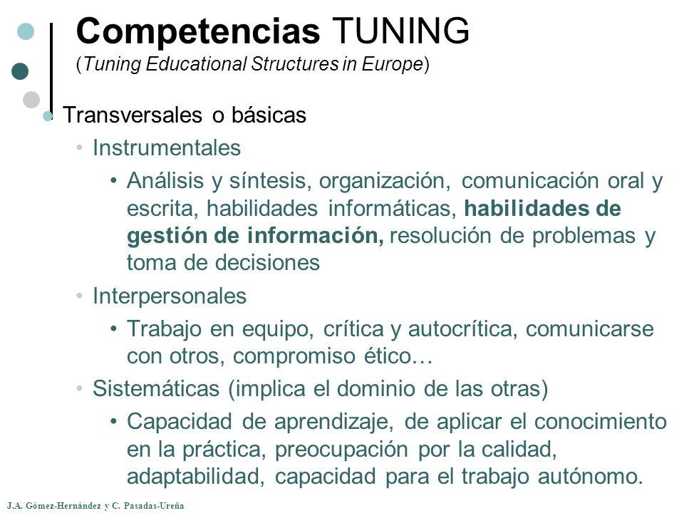 J.A. Gómez-Hernández y C. Pasadas-Ureña Transversales o básicas Instrumentales Análisis y síntesis, organización, comunicación oral y escrita, habilid