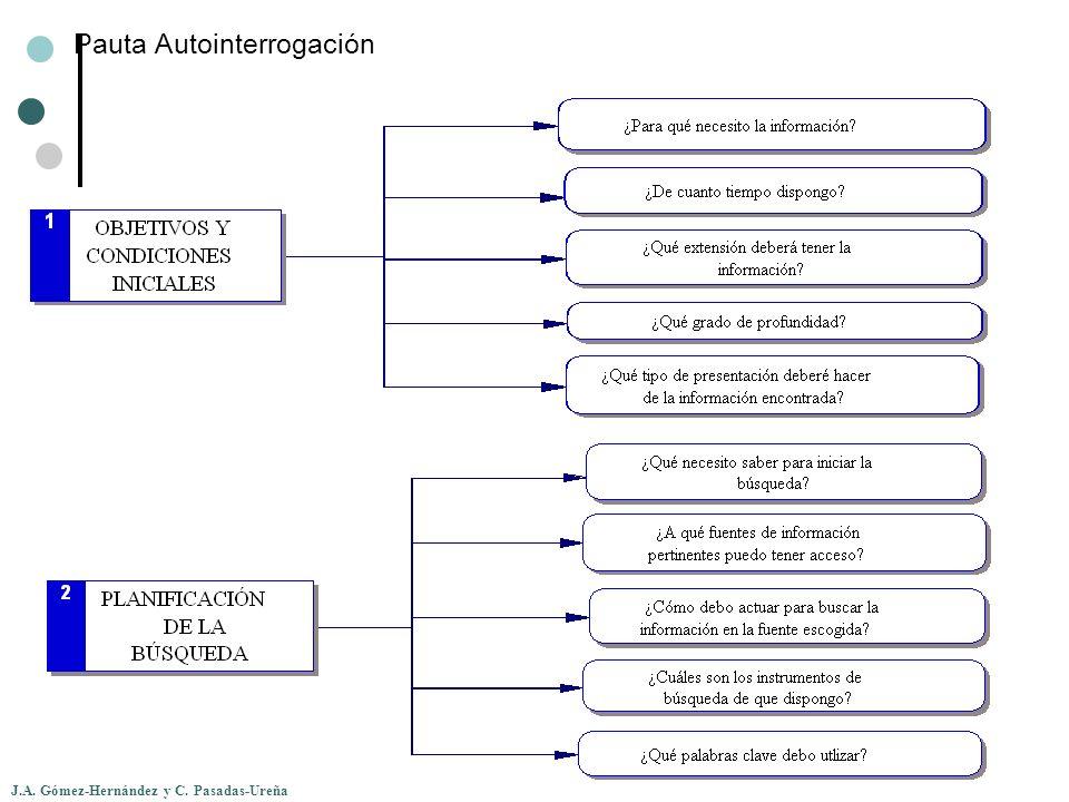 J.A. Gómez-Hernández y C. Pasadas-Ureña Pauta Autointerrogación
