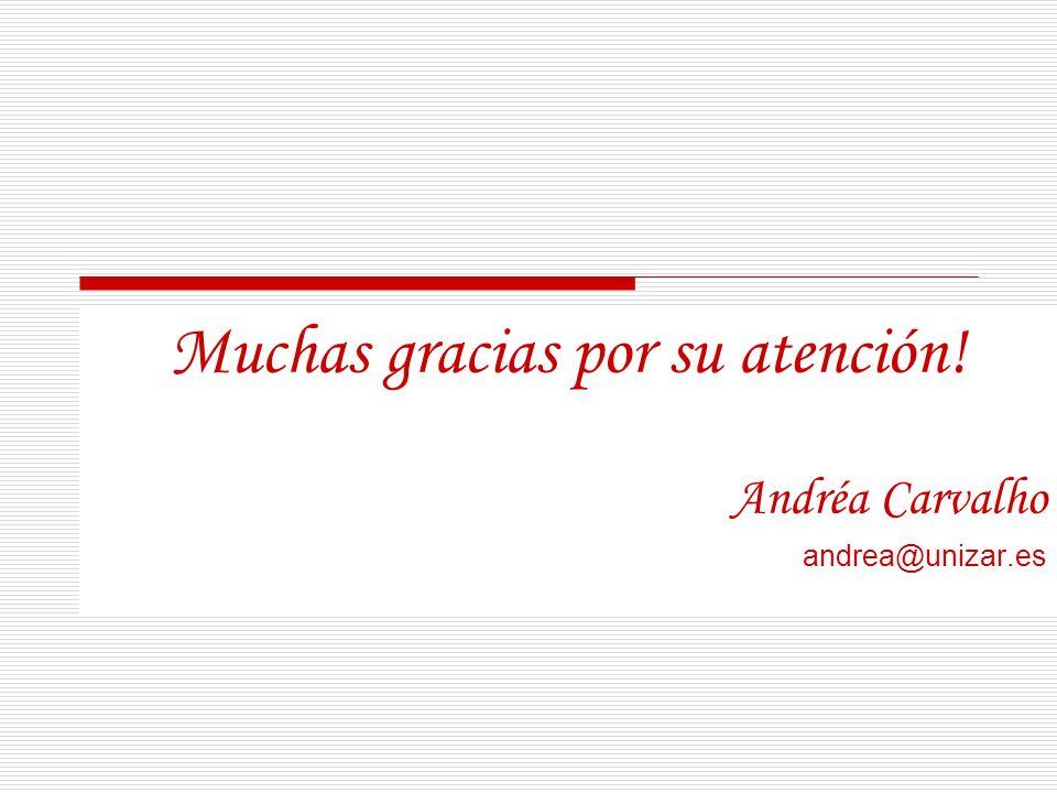 Muchas gracias por su atención! Andréa Carvalho andrea@unizar.es