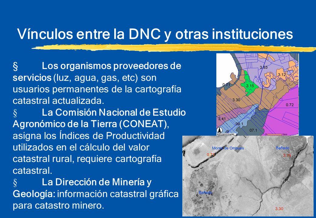 Vínculos entre la DNC y otras instituciones §Los organismos proveedores de servicios (luz, agua, gas, etc) son usuarios permanentes de la cartografía