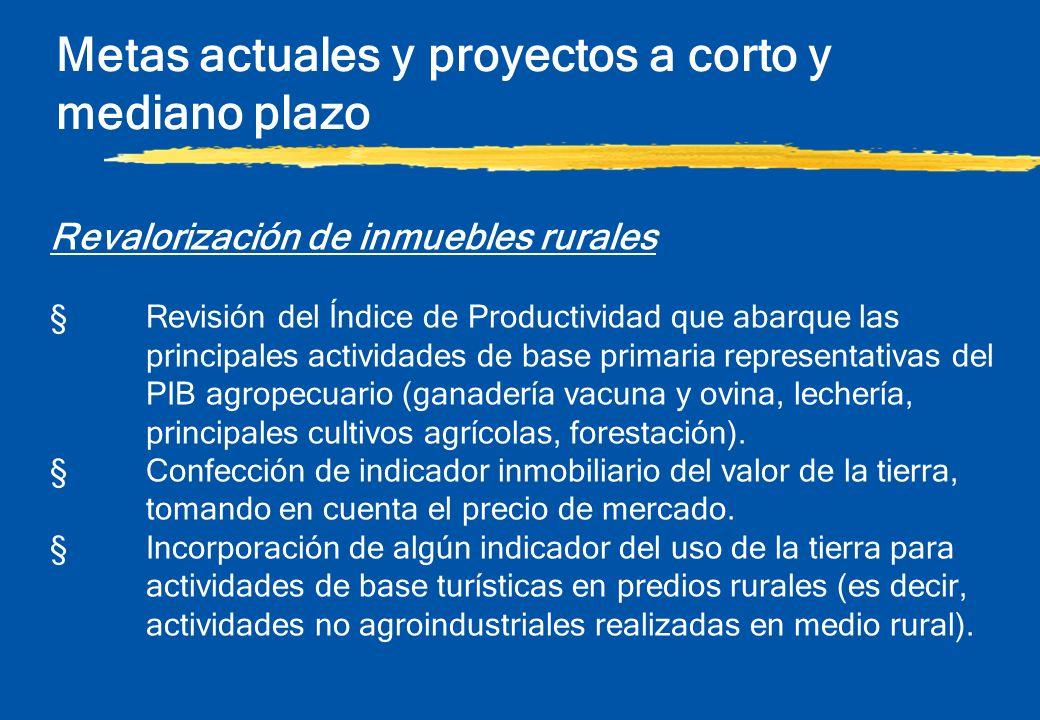 Metas actuales y proyectos a corto y mediano plazo Revalorización de inmuebles rurales §Revisión del Índice de Productividad que abarque las principal