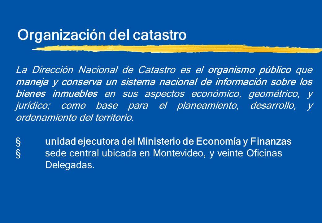 Organización del catastro La Dirección Nacional de Catastro es el organismo público que maneja y conserva un sistema nacional de información sobre los