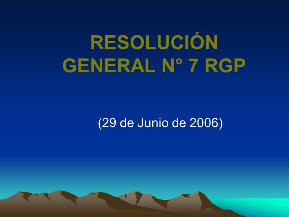 RESOLUCIÓN GENERAL N° 7 RGP (29 de Junio de 2006)