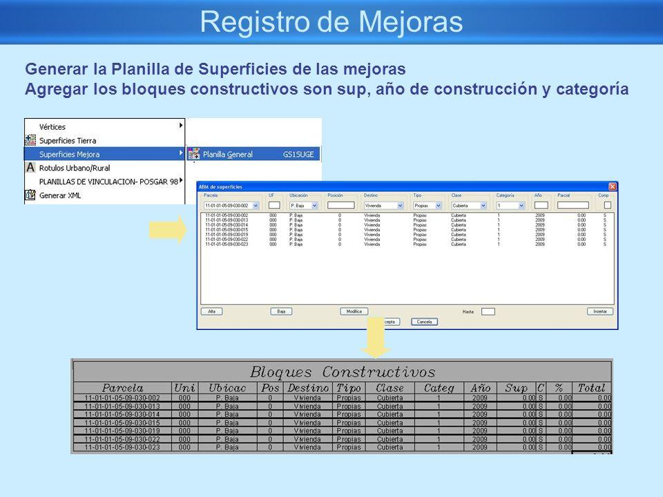Registro de Mejoras Generar la Planilla de Superficies de las mejoras Agregar los bloques constructivos son sup, año de construcción y categoría