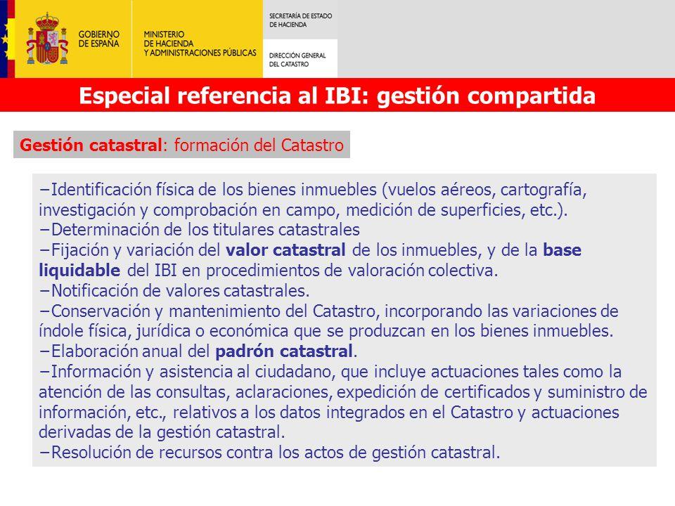 Especial referencia al IBI: gestión compartida Identificación física de los bienes inmuebles (vuelos aéreos, cartografía, investigación y comprobación